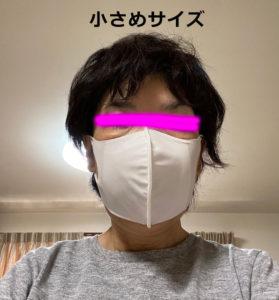 マスク装着時(小さめサイズ)