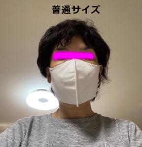 マスク装着時(ふつうサイズ)